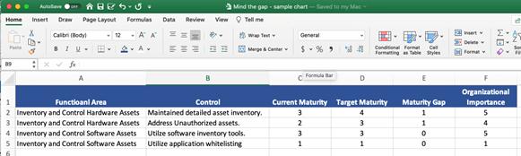 Mind the Gap Maturity Score Sample Spreadsheet